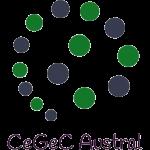 Cegec Austral Universidad Austral de Chile Instituto de Obras Civiles Efeyer Eficiencia Energética Energías Renovables Valdivia
