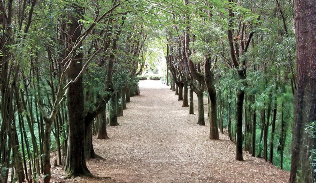 Parque Santa Laura